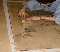 古い裏打ちされた和紙の除去
